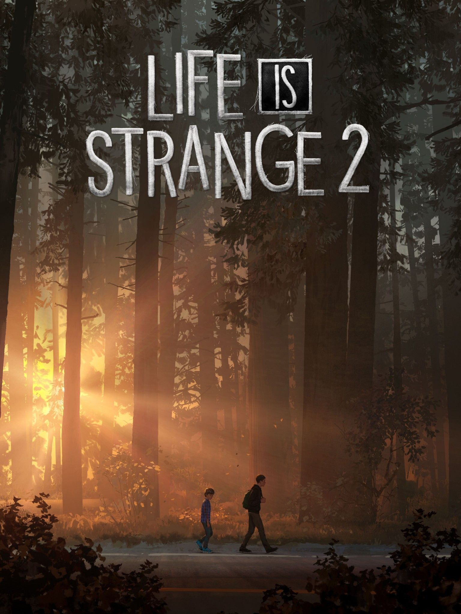 life-is-strange-2-1536x2048-playstation-4-xbox-one-pc-games-4k-8k-15552
